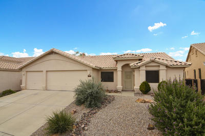 Oro Valley Single Family Home For Sale: 11119 N Divot Drive