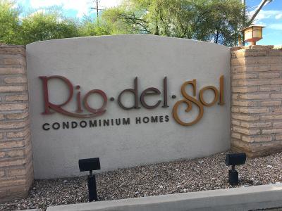 Tucson Condo For Sale: 2550 E River Road #12201