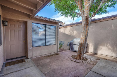 Tucson Townhouse For Sale: 2447 N Palo Hacha Drive