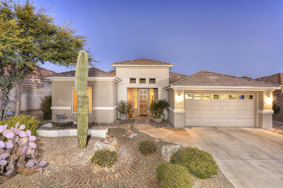 Marana Single Family Home For Sale: 13762 N Heritage Canyon Drive