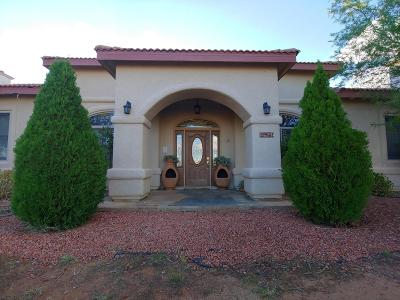 Cochise County Single Family Home For Sale: 1981 N San Marcos De Niza Drive
