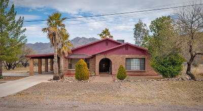 Rio Rico Single Family Home For Sale: 1299 Calle Cherokee