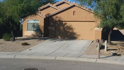 Single Family Home For Sale: 11448 W Anasazi Passage Street