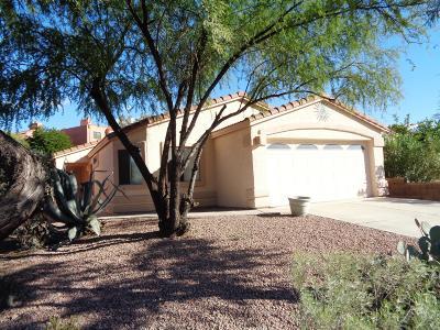 Tucson Single Family Home For Sale: 7837 E Sabino Hollow Court