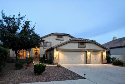 Oro Valley Single Family Home For Sale: 11272 N Twin Spur Court