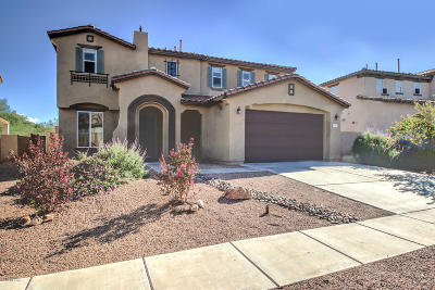 Sahuarita Single Family Home For Sale: 547 W Calle La Bolita