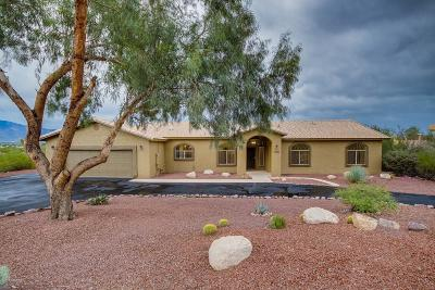 Tucson Single Family Home For Sale: 4900 N Wild Life Drive