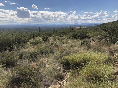 Tucson Residential Lots & Land For Sale: 12165 E Quesada Place #33