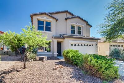 Oro Valley Single Family Home Active Contingent: 12872 N Yellow Orchid Drive