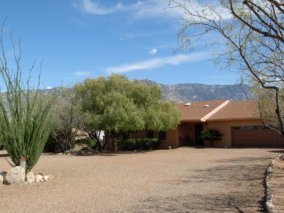 Tucson Single Family Home For Sale: 4822 E Rail N Road