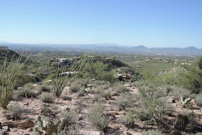 Tucson Residential Lots & Land For Sale: 3658 E Canyon Wind Place #53