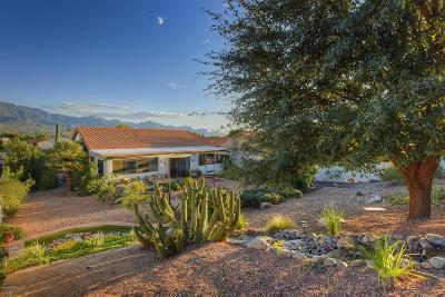 Tucson Single Family Home For Sale: 64304 E Round Robin Lane
