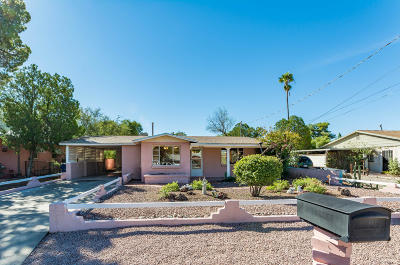 Tucson Single Family Home For Sale: 2542 E Halcyon Road