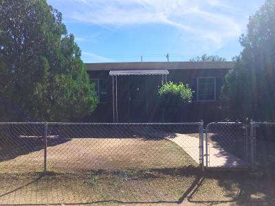 Tucson Single Family Home For Sale: 316 E Lester Street