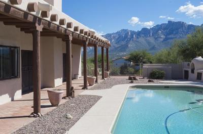 Tucson Single Family Home For Sale: 843 W Pomegranate Lane