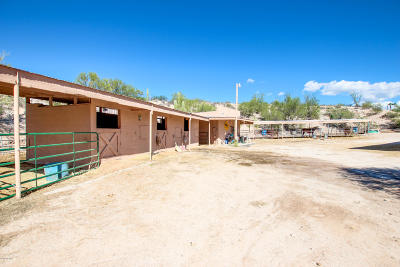 Tucson Single Family Home For Sale: 5199 N 1st Avenue