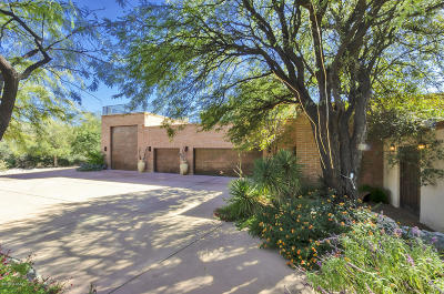 Tucson Single Family Home For Sale: 4835 N Rock Canyon Road