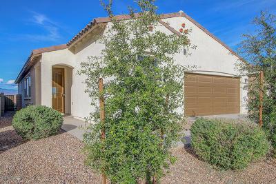 Tucson Single Family Home For Sale: 6635 E Via Boca Grande