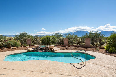 Green Valley Single Family Home For Sale: 1072 E Cave Canyon Place