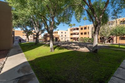 Tucson Condo Active Contingent: 1810 E Blacklidge Drive #1021