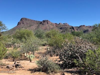 Residential Lots & Land For Sale: Pale Moon Trail