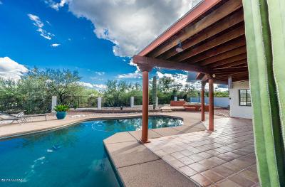 Sahuarita Single Family Home For Sale: 1355 W Paseo Del Compadre