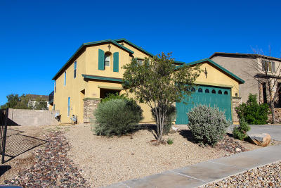 Tucson Single Family Home For Sale: 1332 S Woodbine Lane