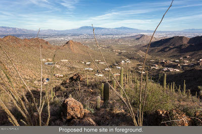 Tucson Residential Lots & Land For Sale: 6750 W Hidden Canyon Drive