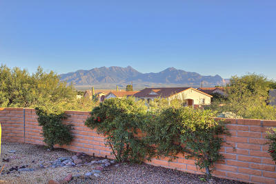 Green Valley Single Family Home For Sale: 1017 W Camino Delicias