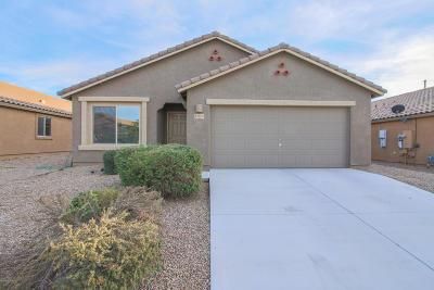 Marana Single Family Home Active Contingent: 11513 W Stone Hearth Street