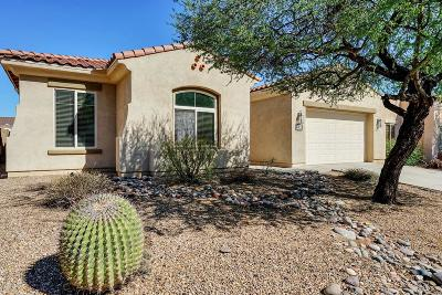 Sahuarita Single Family Home For Sale: 273 E Via Puente De La Lluvia