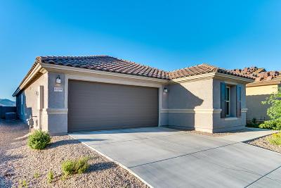 Tucson Single Family Home Active Contingent: 8580 W Amazilia Place