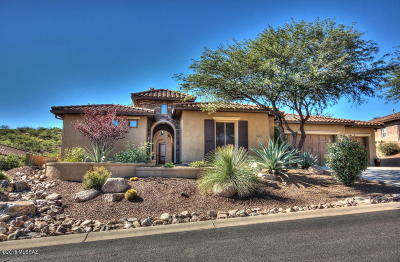Single Family Home For Sale: 36618 S Desert Sun Drive
