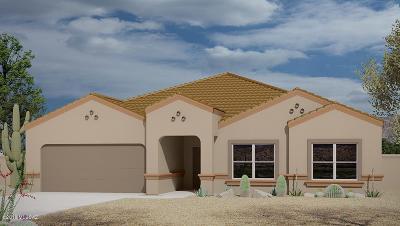 Sahuarita Single Family Home For Sale: 17718 S Whispering Glen Path