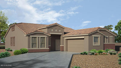 Marana Single Family Home For Sale: 9141 W Silver Cholla Drive