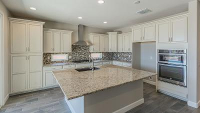 Marana Single Family Home For Sale: 7195 W Secret Bluff Ps Pass W