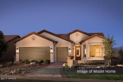 Tucson Single Family Home For Sale: 61814 E Border Rock Road