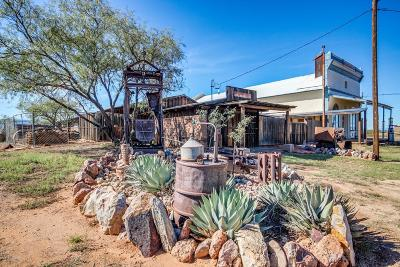 Cochise County Single Family Home For Sale: 905 Ghost Town Trail