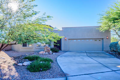 Pima County Single Family Home For Sale: 10751 S Fiery Dawn Court