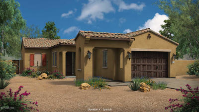 Tucson Single Family Home For Sale: 13416 N Flaxleaf Place