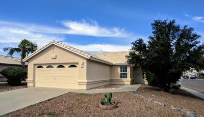 Tucson Single Family Home For Sale: 7014 W Amarante Drive