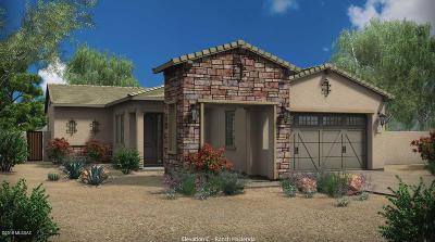 Tucson Single Family Home For Sale: 958 W Hesperaloe Court
