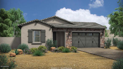 Tucson Single Family Home For Sale: 13410 N Flaxleaf Place