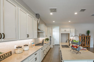 Single Family Home For Sale: 169 E Brookdale Way