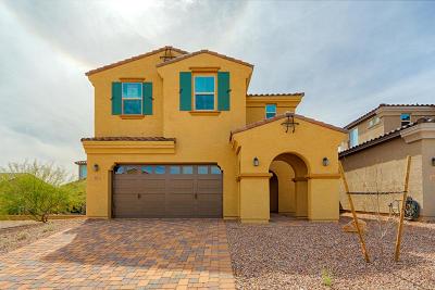 Tucson Single Family Home For Sale: 961 W Hesperaloe Court