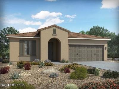 Tucson Single Family Home For Sale: 6747 E Via Arroyo Azul