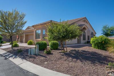 Vistoso Village Townhouse For Sale: 13401 N Rancho Vistoso Boulevard #177