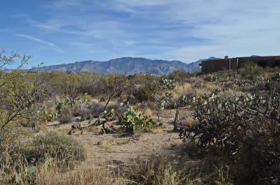 Tucson Residential Lots & Land For Sale: 1079 W Tortolita Mountain Ci Circle W #170
