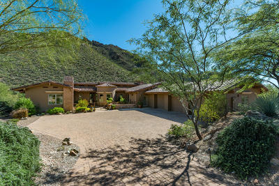 Marana Single Family Home For Sale: 14842 N Dove Canyon Pass