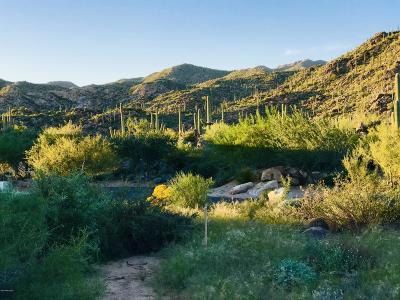 Oro Valley Residential Lots & Land For Sale: 14589 N Rocky Highlands Drive #220
